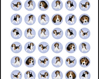 Beagles set 1 with 4 digital bottlecap collage sheets INSTANT DOWNLOAD 8.5in x 11in