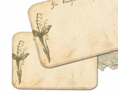 Jane Eyre Notecards,  Bridal Shower Notecards, You Transfix Me, Lily of Valley Bridal Shower Thank You Notes, Charlotte Bronte