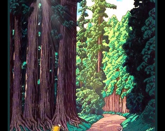 Redwood Forest Refrigerator Magnet - FREE US SHIPPING