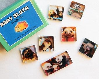 Baby Sloths Magnet Set