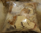 Crafting supplies, coyote fur scrap, including up to 6 coyote leg skins, great art doll supplies