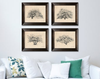 Collection of 4 Oak Tree Pen and Ink Drawing Art Prints on Maple Wood Veneer by Savannah Artist Heather L. Young