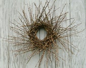Strawflower Fields Wreath Fresh Pussy Willow Wreath