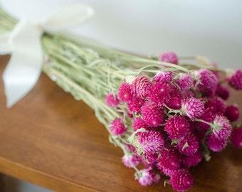 Dark pink gomphrena, dark pink globe amaranth, dark pink globe amaranth, dark pink gomphrena, pink wedding, clover flowers, wildflower decor