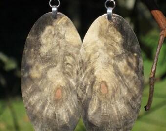 Large Resin Infused Very Lightweight Reclaimed Wood Buckeye Burl Earrings