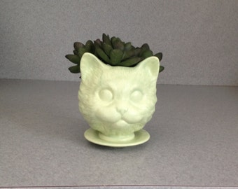 Cat head ceramic planter on saucer LICKING LIME house plant pot