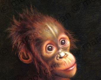 Orangutan postcard 6-pack