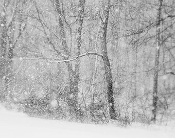 Snow Photograph, Rustic Decor, Winter Print, Woodland Photo, New England, Fine Art Photography, Dreamy, Black and White, Grey, Wall Decor