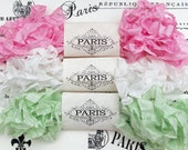 Shabby Crinkled Seam Binding Ribbon, Pink, White, Mint, Rayon Ribbon, French Vintage,Scrapbooking,Sewing, Doll Making, French Charlotte