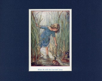 Adorable circa 1940's Susan and Wild Ducks Vintage Cicely Mary Barker Print