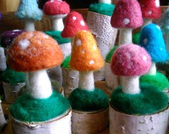 Tiny Mushrooms on White Birch