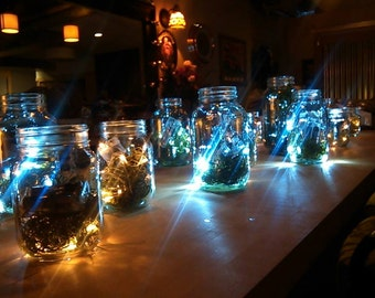 20 Firefly Lanterns-Variety Pack-Incandescent & LED-Magical!