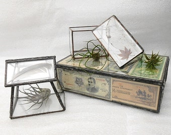 Geometric Glass Terrarium House - Handmade Stained Glass Terrarium Planter for Indoor Gardening - Feather top terrarium