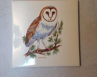 Vintage BARN OWL Tile Trivet with Cork