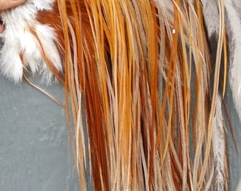 "12 Long Fine Colored Red and Grey Rooster Hackle Feathers (7-10"" plus) For Hair Extensions and crafts- Stock No. ARU"