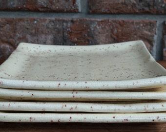 Handcrafted Ceramic Spiced Cream Honey Brush Prairie Washington Square Sushi Plate Set or Dessert Plate Set for Four