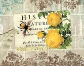 Vintage Style Tags, Bee Tags,  Roses Tags