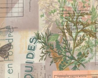 Tim Holtz Multi wallflowers botanical fabric yardage