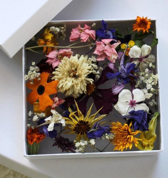 Craft supplies stocking stuffer dry flowers real by for Dried flowers craft supplies