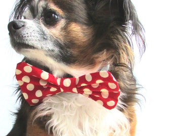 Pet Bowtie-Red and White Polka Dot Clip on