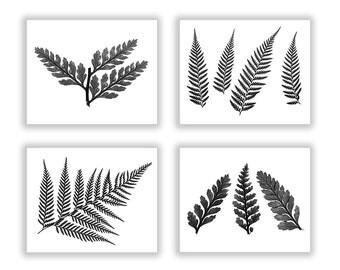 Fern Black and White Botanical Print Set, Nature Cottage Art Wall Decor, Kitchen Garden Prints, Large Sized Set