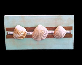 Seashell wall art, Beach Wall Art, Beach art, shell wall art, Beach decor, Shell Art, Seashell Art, Seashell Wall decor, Shell Collage
