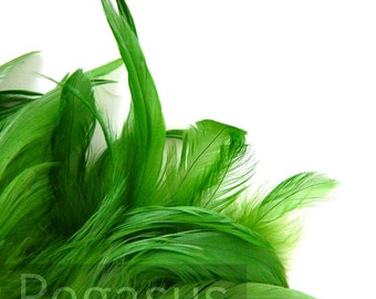 Loose Kelly Green Rooster hackle Feathers (3-5 inches)(12 Feathers) DIY craft material for millinery, trim, masks and hair fascinators