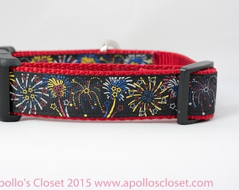 Fireworks 1 inch wide Dog Collar, buckle or martingale, flag, 4th of july, memorial, american, liberty, red, white, blue, celebrate