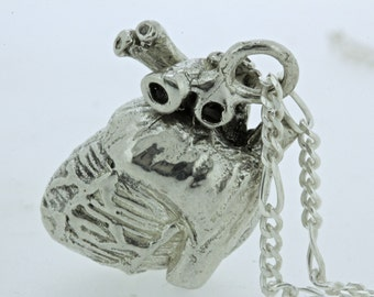 Anatomical heart necklace  in .925 Sterling silver on a sterling silver chain, Made in NYC