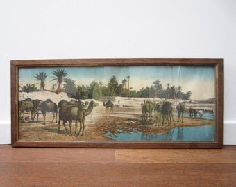Ancient framed ORIENTALIST PHOTOGRAPHY⎮CAMELS drinking in a palm grove⎮colorized photo⎮far east desert caravan orient⎮exotic decor