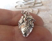 Petite Sterling Silver Anatomical Heart Necklace