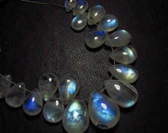 AAA -High grade quality - Amazing Flashy Blue Fire Rainbow Moonstone Smooth pear briolett Huge size - 4.5x7  - 11x15 mm - 21 pcs