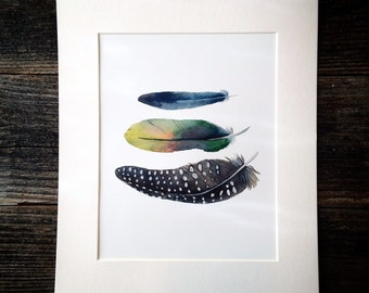 Watercolor Bluebird, Parrot, and Guinea Fowl Feathers Trio Print