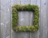 "15"" square moss wreaths  (2)  for Carrin"
