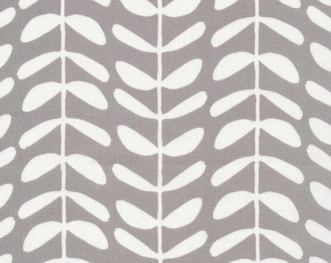 Organic CANVAS - Cloud9 Yoyogi Canvas - Vines Gray Canvas