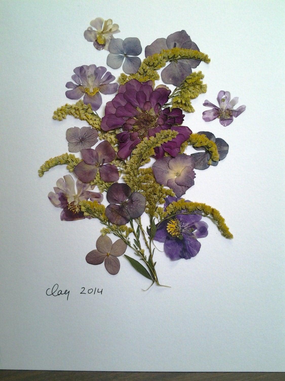 Pressed Flower Art XI Display of Real Pressed Flowers