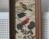 Vintage Birds Art Print on Linen by Kay Dee Handprints USA, R. Batchelder Wood Frame Wall Art, Tanager Birds Study Ornithology, Naturalist