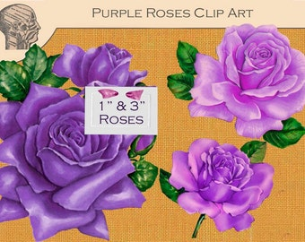 Printable Purple Roses Images Digital Collage Sheet Graphics Instant Download Rose Graphics Rose Pictures Flowers