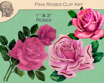 Printable Pink Roses Images Digital Collage Sheet Instant Download Rose Graphics Rose Pictures Flowers Graphics