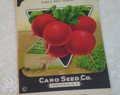 Card Seed Company, Radish seed packet, 1920's unused, Early Red Turnip