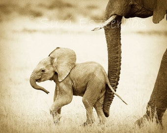 Safari Nursery Decor, BABY ELEPHANT PHOTO, Vintage Sepia Print, Baby Animal Photography, African Wildlife Photograph, Baby Nursery Wall Art