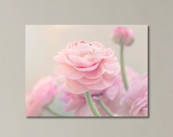 "Pink Ranunculus Canvas Art, Nursery Room Decor, Pink Girls Room Art, Floral, Shabby Chic, Pastel, Gallery Wrap ""Delicate Pink"""