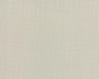 Country Orchard - Bird Netting in Morning Sky by Blackbird Designs for Moda Fabrics - Last Yard