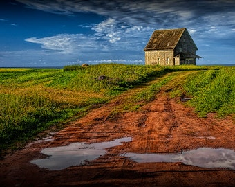 Abandoned Farm Building after a Summer Rain on Prince Edward Island Canada No.1442 - A Rural Landscape Photograph