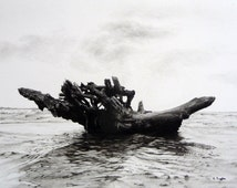 Driftwood galleon, original charcoal drawing, driftwood art, black and white, seashore art, coast art, pencil drawing, landscape art