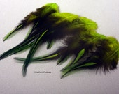 Camouflage Bright Green Forest Green Feathers Laced Rooster Saddles Craft Supplies for Accessories Hat Hair Fishing Hackle 12 Pack 4-6inch