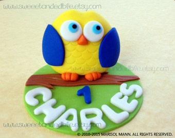 BLUE OWL Edible CAKE Topper