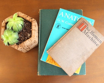 Skulls and Bones... Vintage Anatomy Book Set Bundle, Book Collection