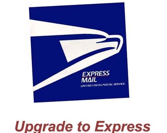 Upgrade to USPS Express Mail 1 to 2 business days - Domastic Only