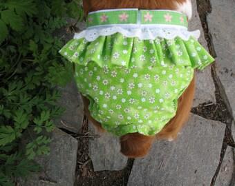 Springtime Spankie (dog diaper)